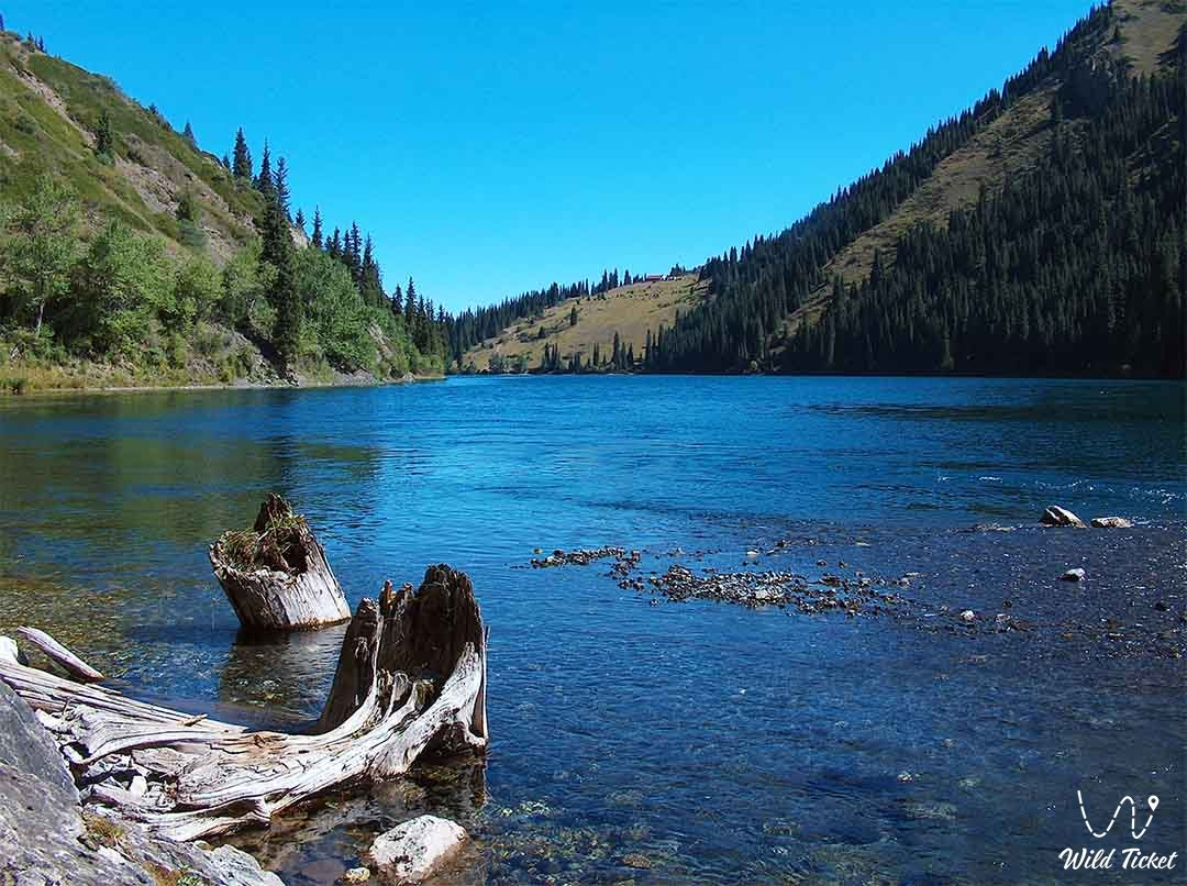 Kolsay national natural park, Kolsay Kulderi, in Kazakhstan.