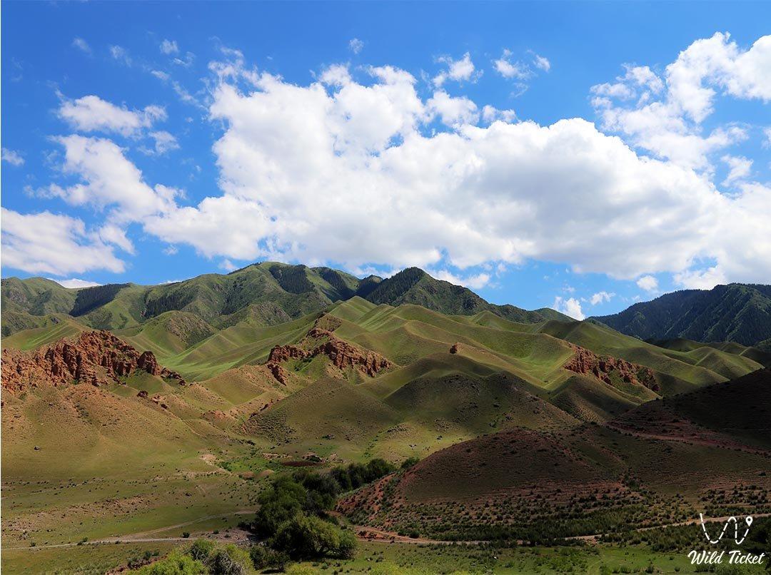 Жаман Уй урочище после плато Ассы, Тургеньское ущелье, Казахстан.