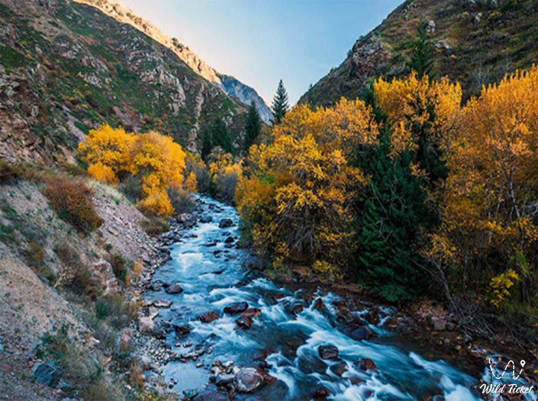 Аса река в Жамбылской области, Казахстан.