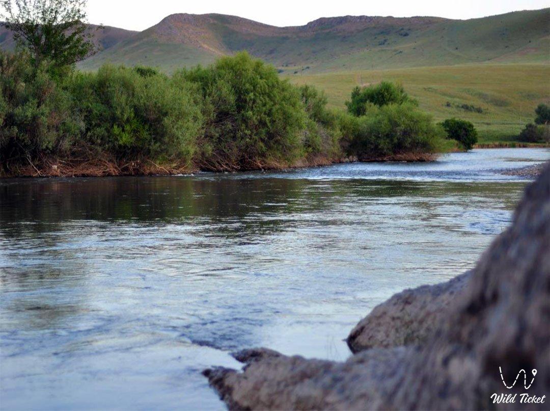 Боролдай река в в районе Ордабасы, Казахстан.