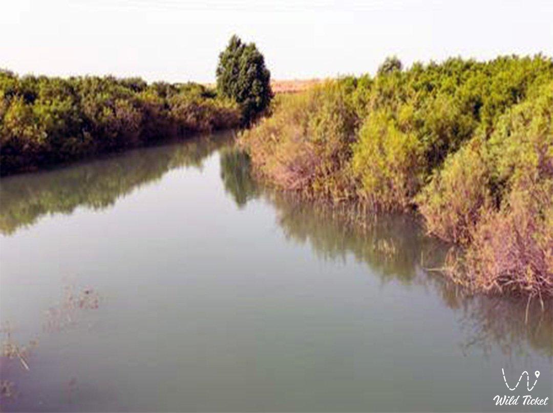Бугунь река в Туркестанской области, Казахстан.