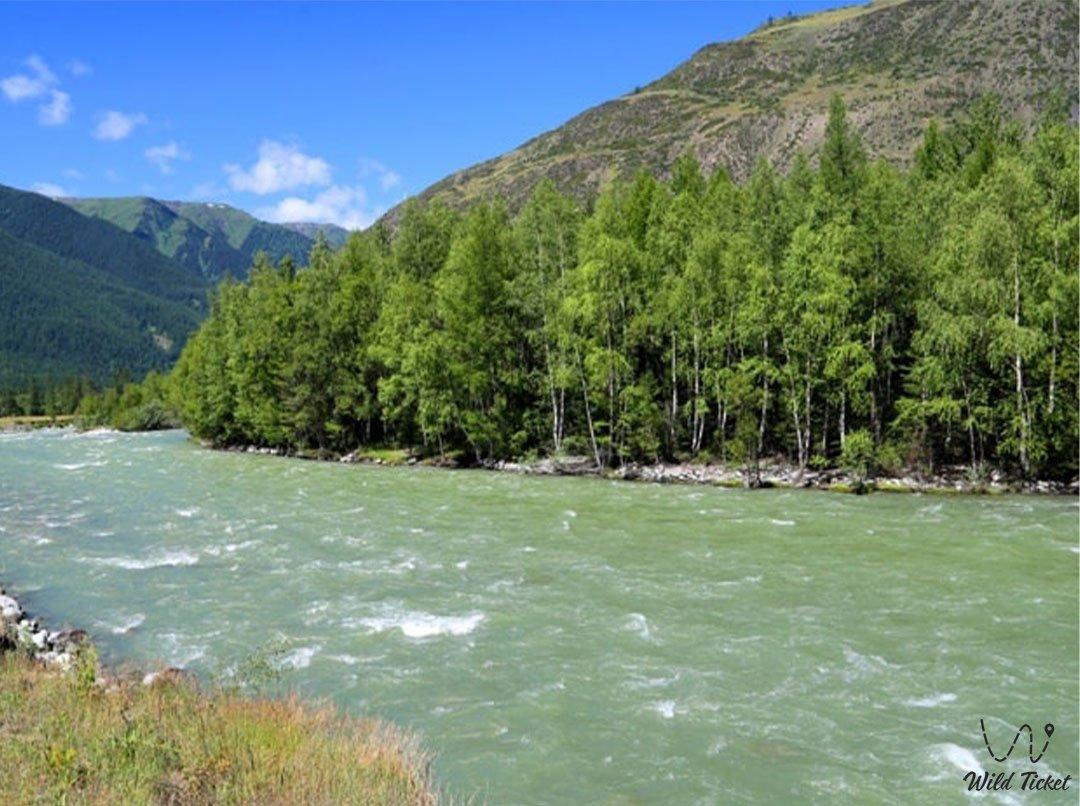 Бухтарма река в Восточном Казахстане.