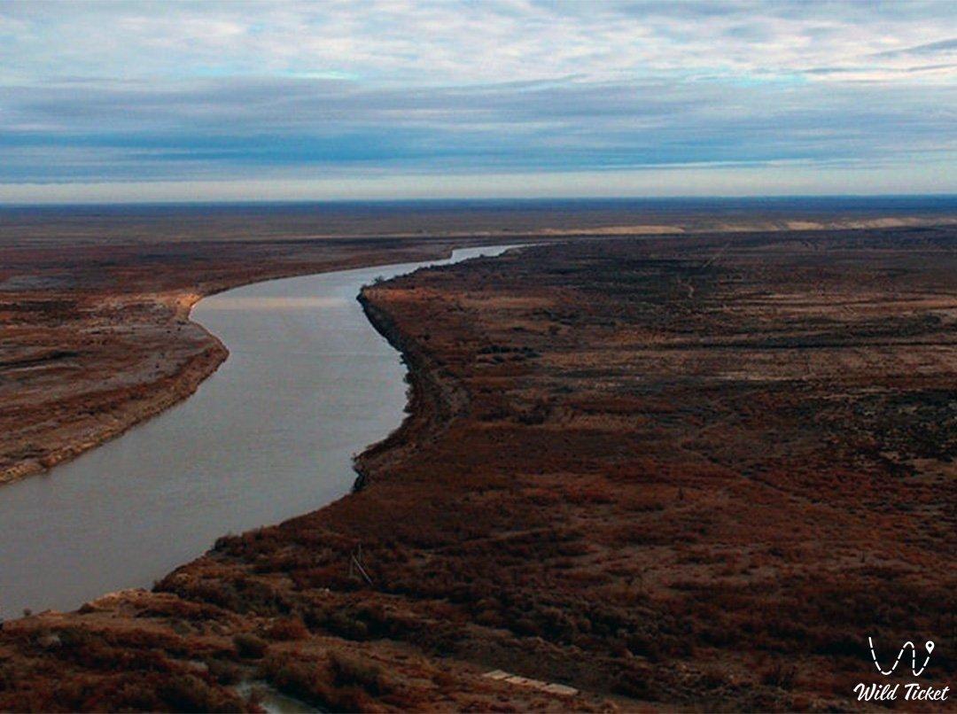 Сырдарья река в Казахстане.