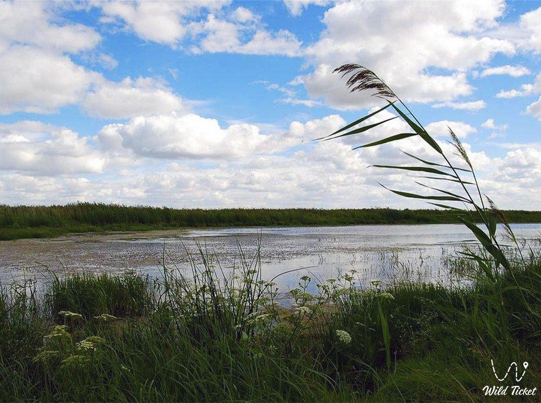 Убаган река в Костанайскй области, Казахстан.