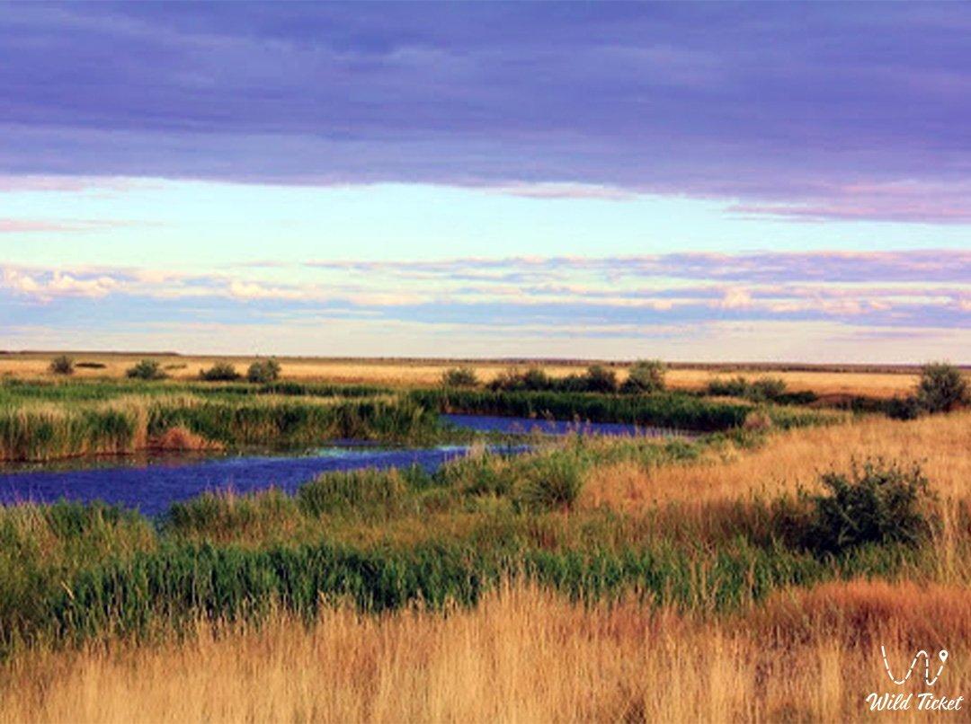 Uil steppe river in Kazakhstan.