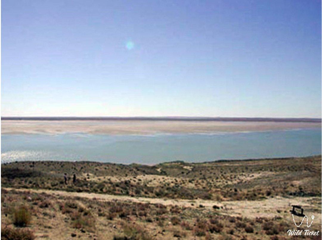 Келес река в Туркестанской области, Казахстан.