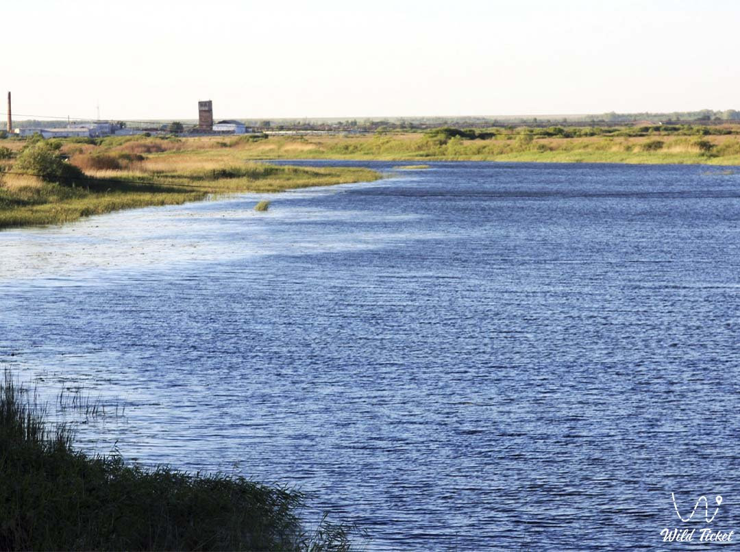 Калутон река в Акмолинской области, Казахстан.