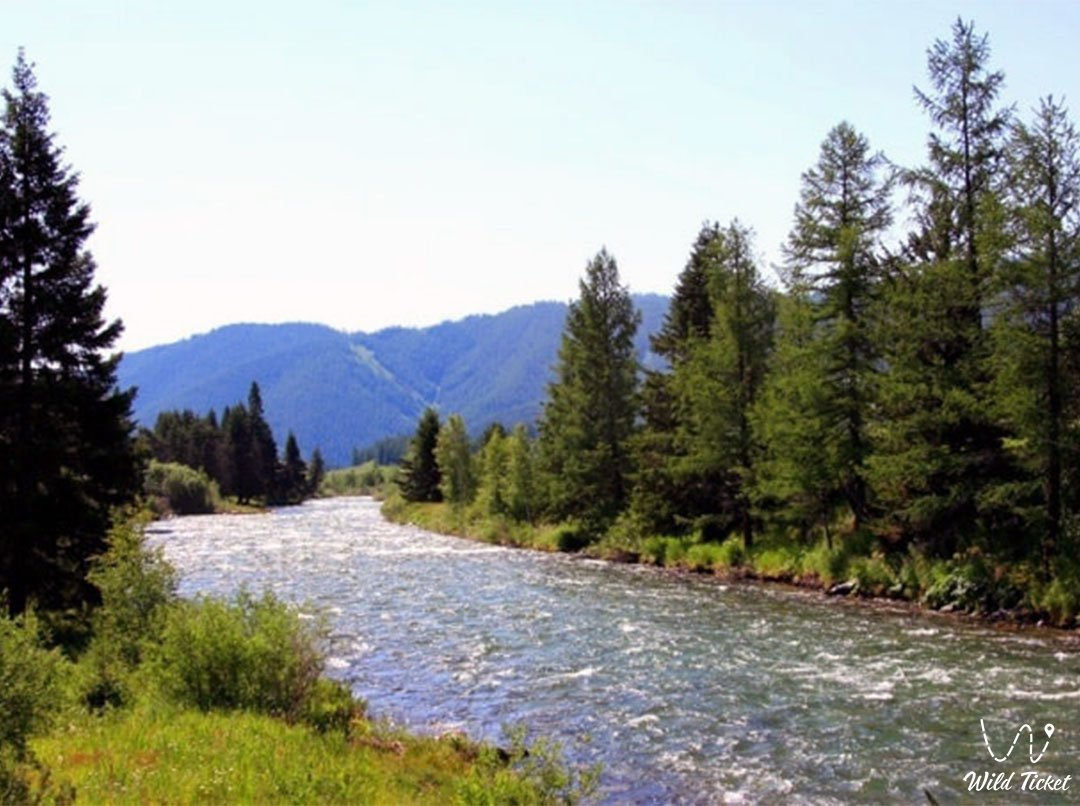 Нарым река в Восточном Казахстане.