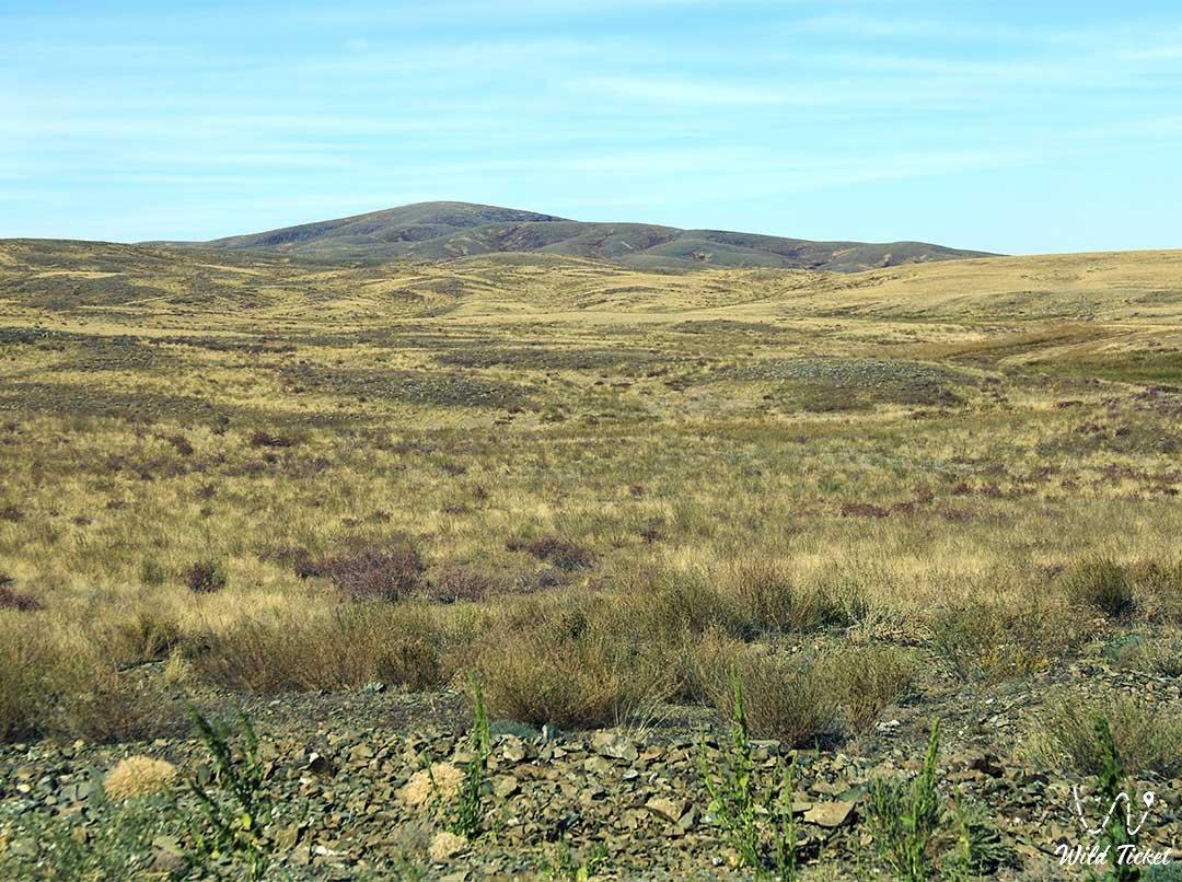 Mugodzhary mountains and hills in Aktobe region, Kazakhstan.