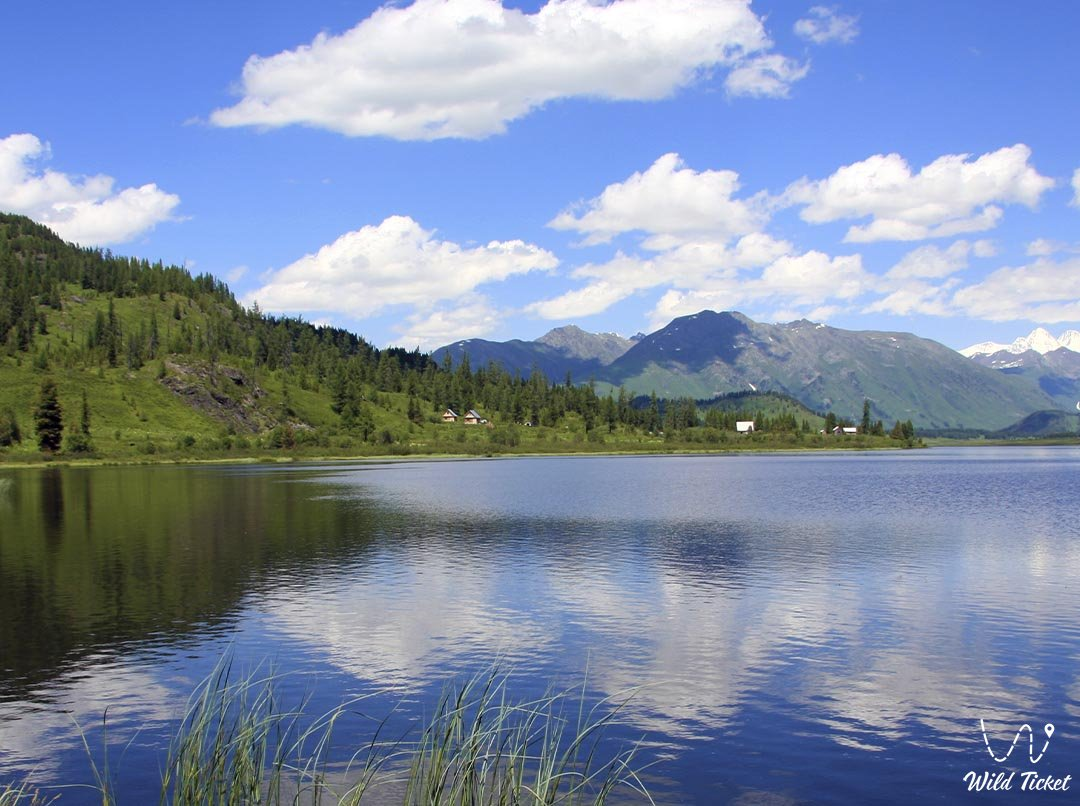 Kazakhstan Altai region, Russian Altai, Asian Altai.