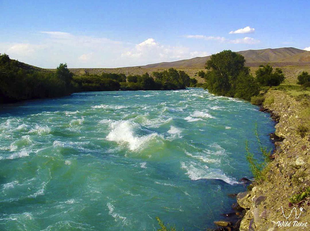 Чилик река в Алматинской области, Казахстан.