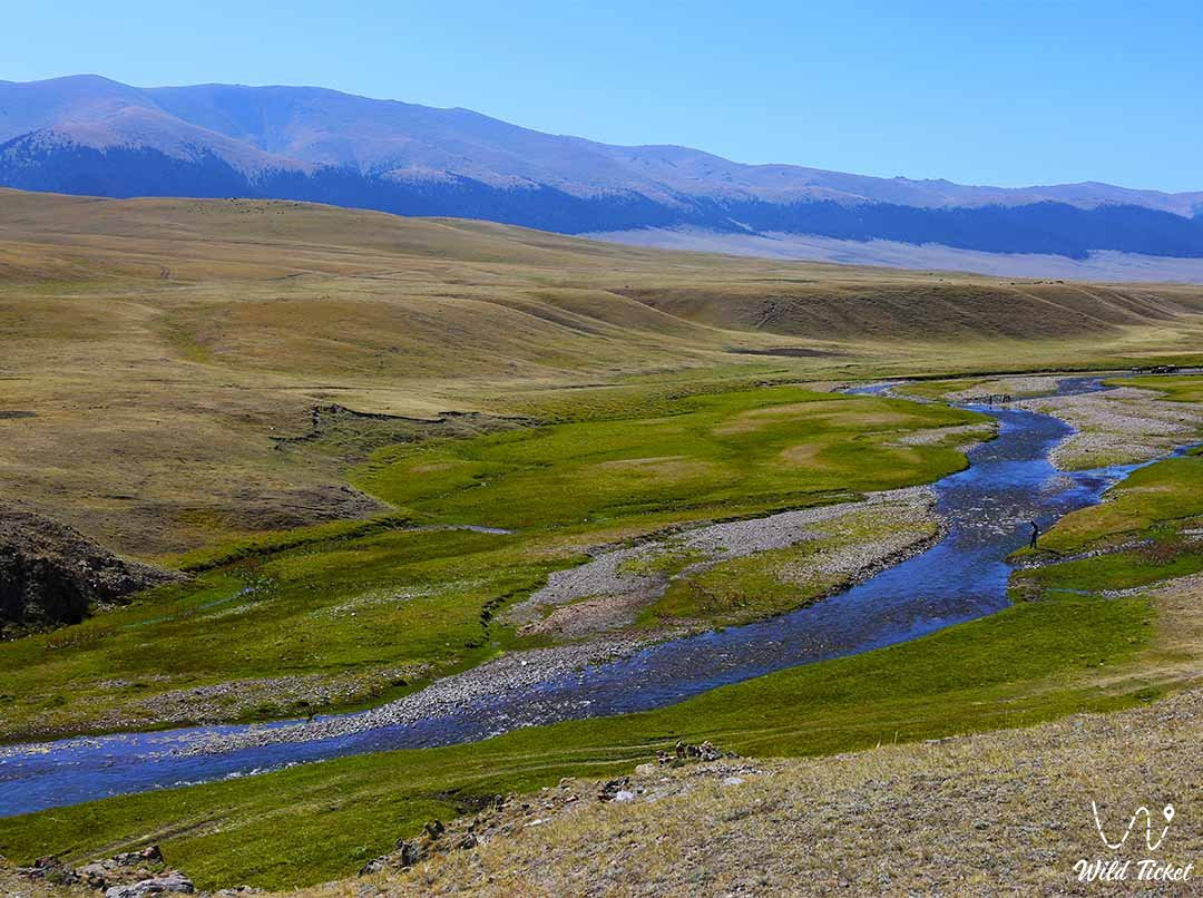 Асы река на плато Ассы, Тургеньское ущелье, Алматинская область, Казахстан.