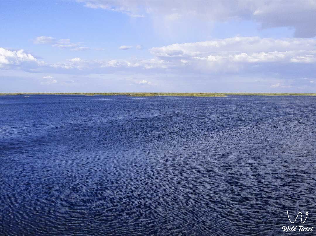Small Ara Sea (North Aral) in Kyzylorda region, Kazakhstan.