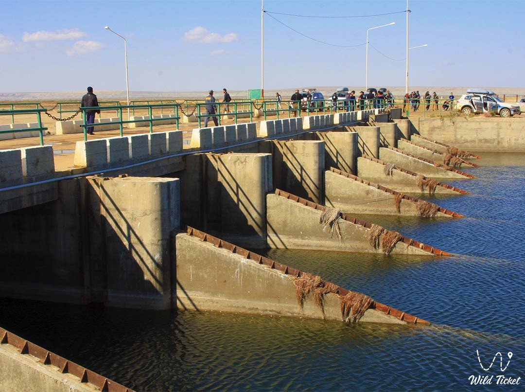 Kokaral dam on the Aral Sea in Kazakhstan.
