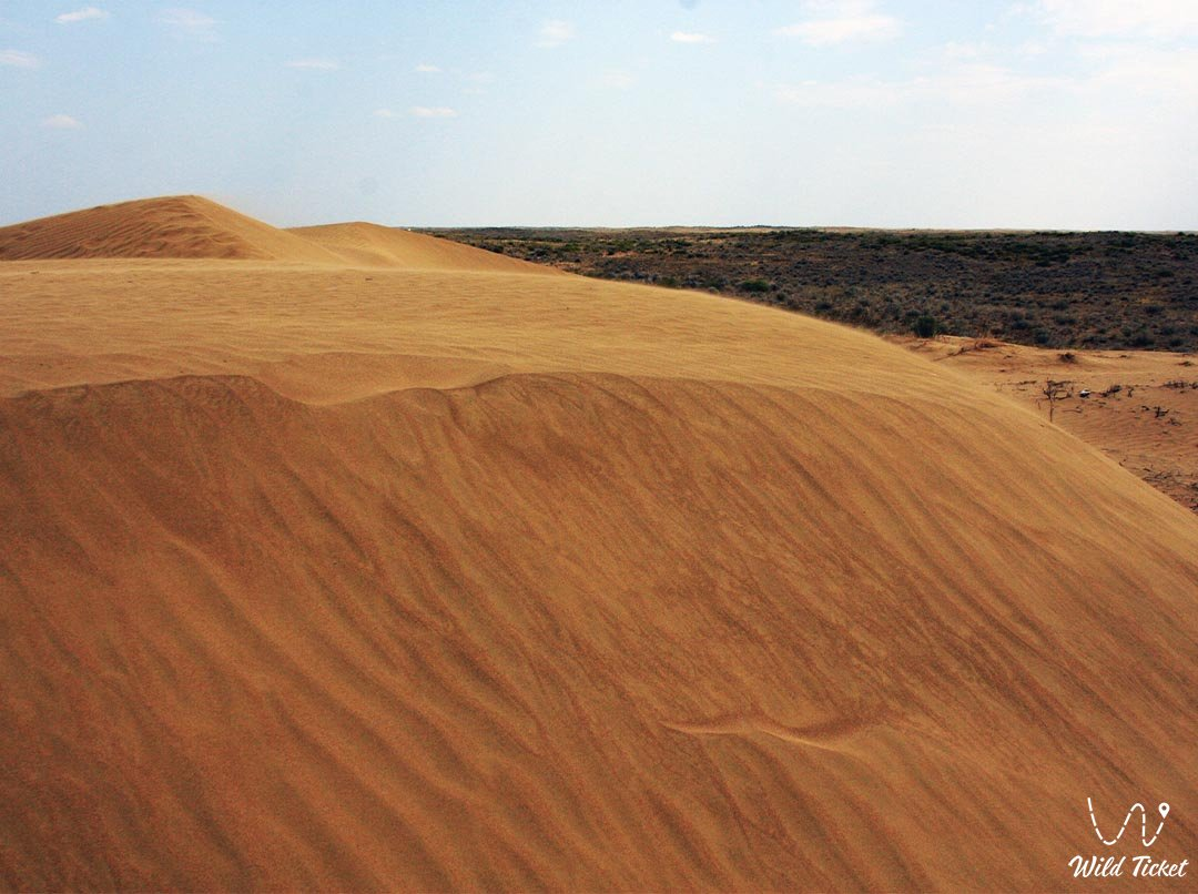 Alkakolkum desert in Turkestan region, Kazakhstan.
