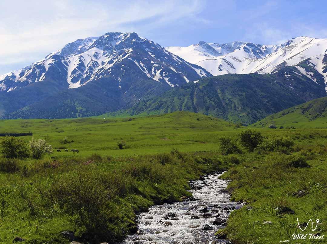 Mount Bessaz, tours in Karatau mountains, Turkestan region, Kazakhstan.