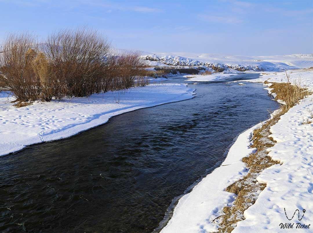 Река Курты, экскурсия к реке, Алматинская область, Казахстан.