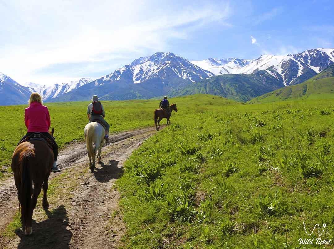 Эко туризм в Казахстане, приключения в заповеднике Аксу-Жабаглы, природа Казахстана.