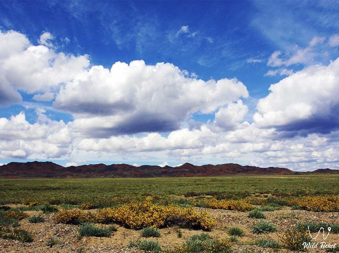 Bozoy plateau in Almaty region, Kazakhstan