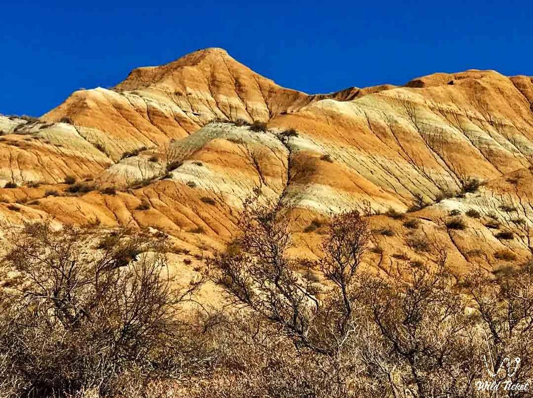Dolantau tiger mountains, travel to the Almaty region in Kazakhstan.