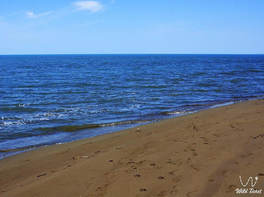 Algazy island on Lake Balkhash, Karaganda region, Kazakhstan.