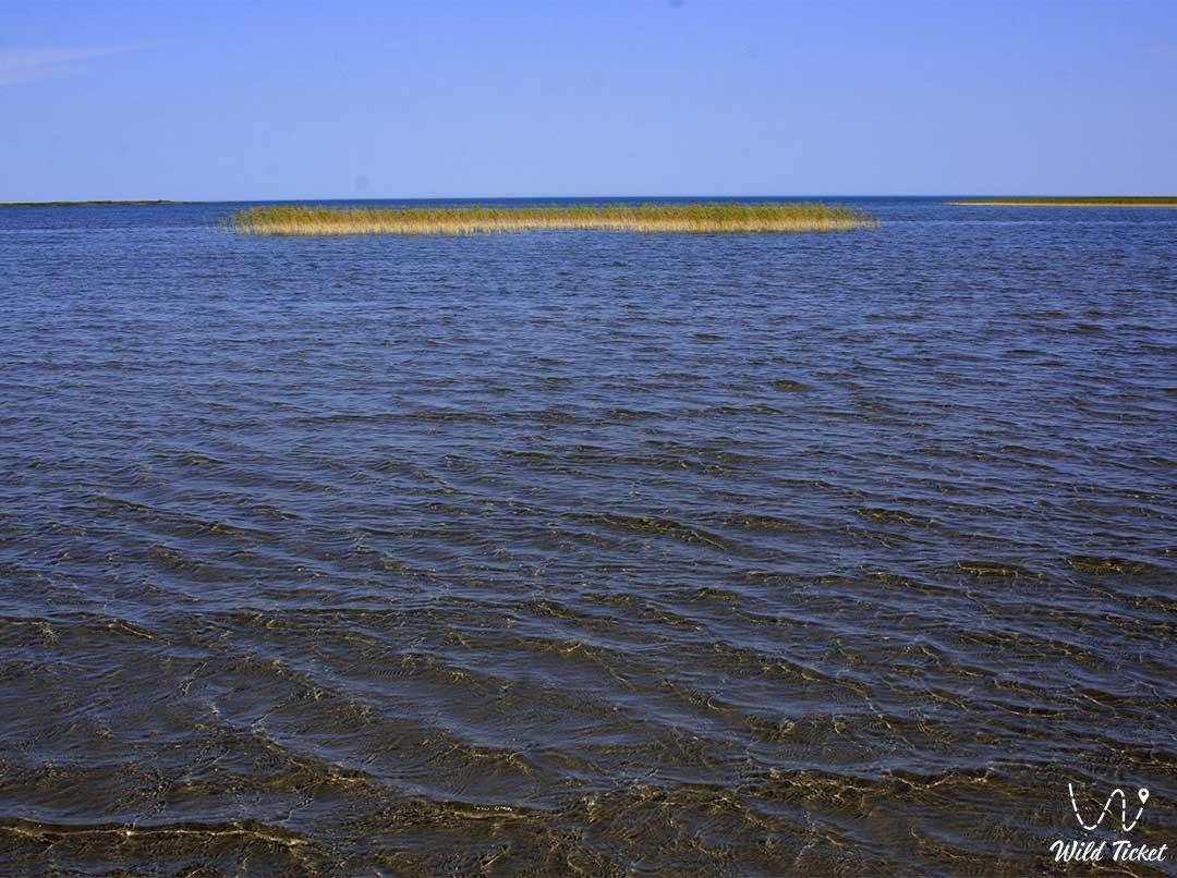 Шалкар озеро в Западно-Казахстанской области, Республика Казахстан.