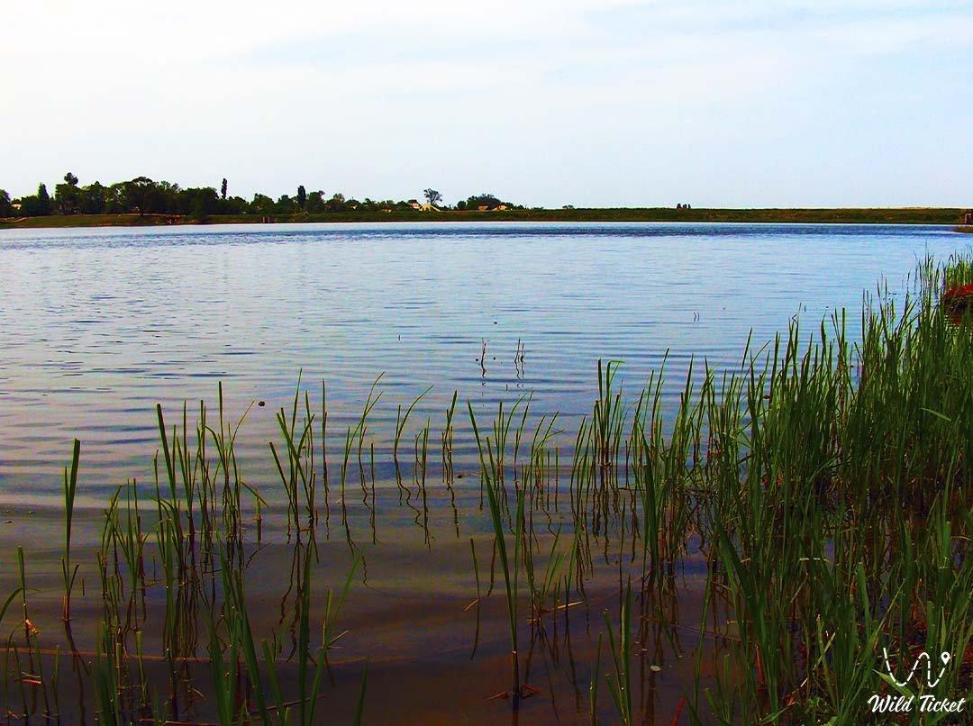 Озеро Саумалколь, Северо Казахстанская область.