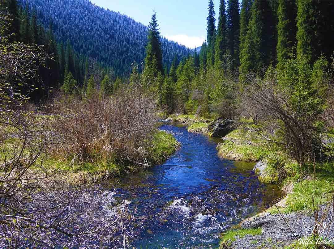 Kolsai River, Kolsai Natural Reserve, Kazakhstan.