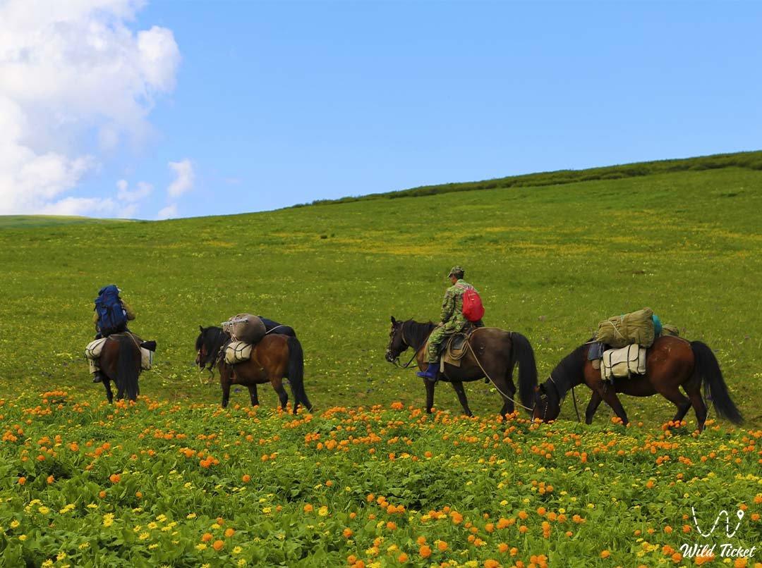 Kholzun ridge, Kazakhstan Altai