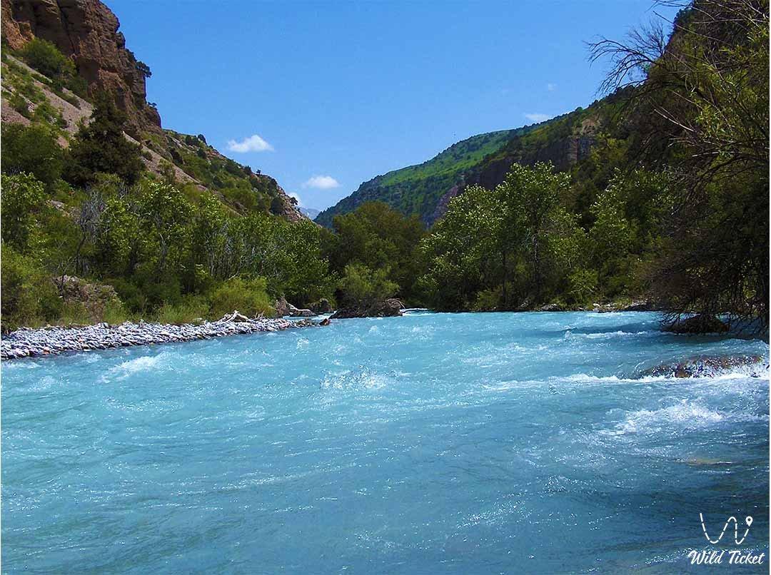 Aksu river in the Aksu-Zhabagly reserve.