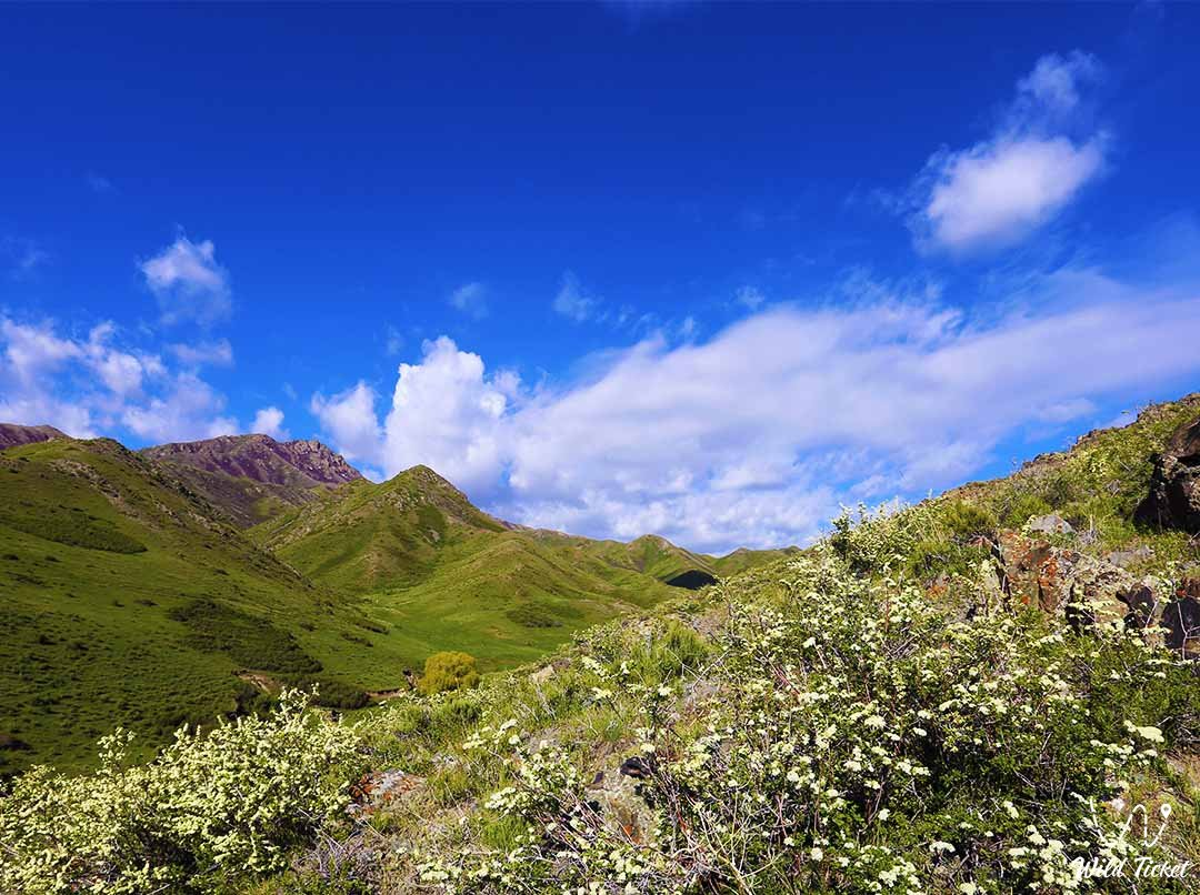 Matai mountains in the Altyn-Emel nature reserve.