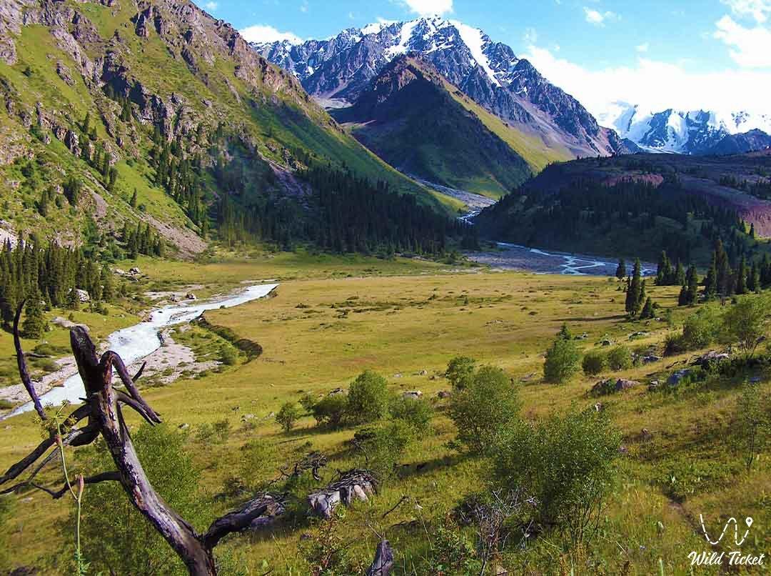 Left Talgar mountain gorge.