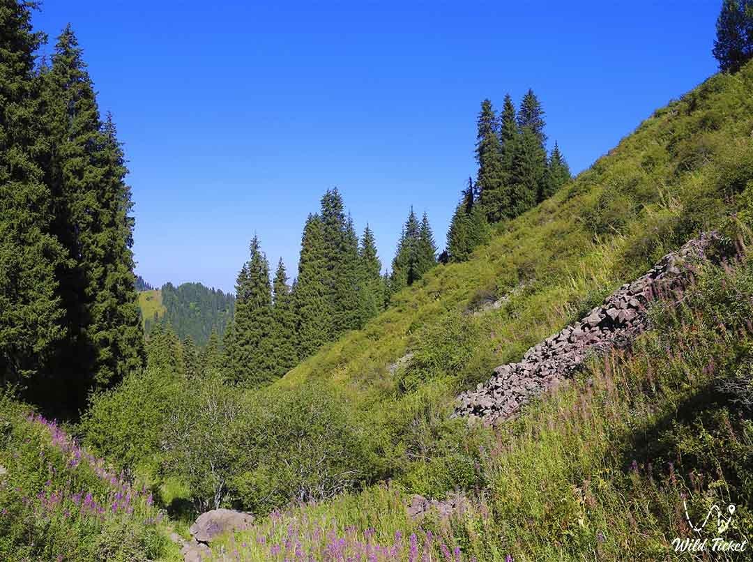 Alma-Arasan is a mountain gorge in the mountains of Almaty.