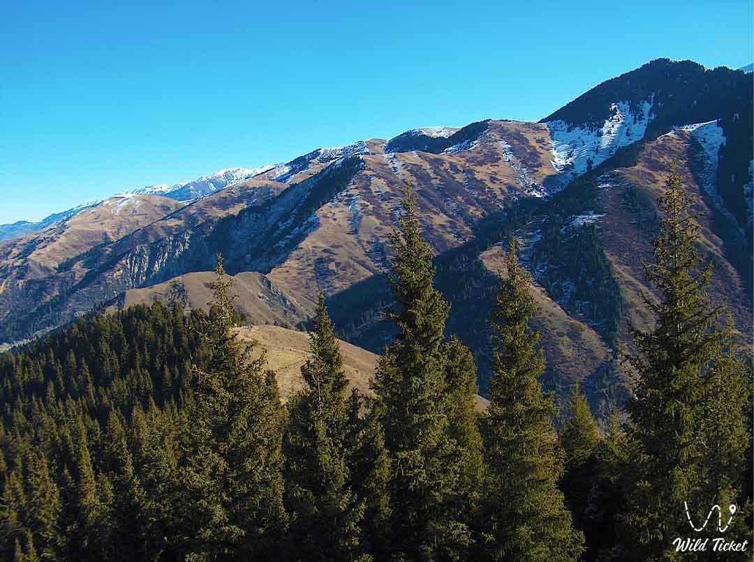 Aksai gorge.