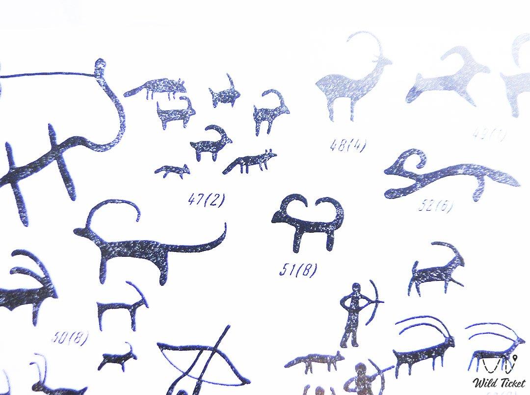 Грот Драверта, Писаница или писанные камни у озера Жасыбай