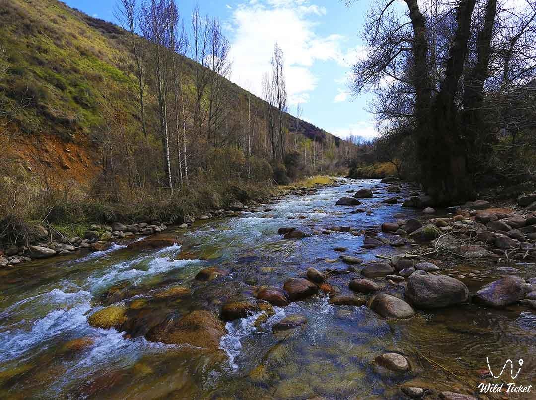 Kaskelen river.